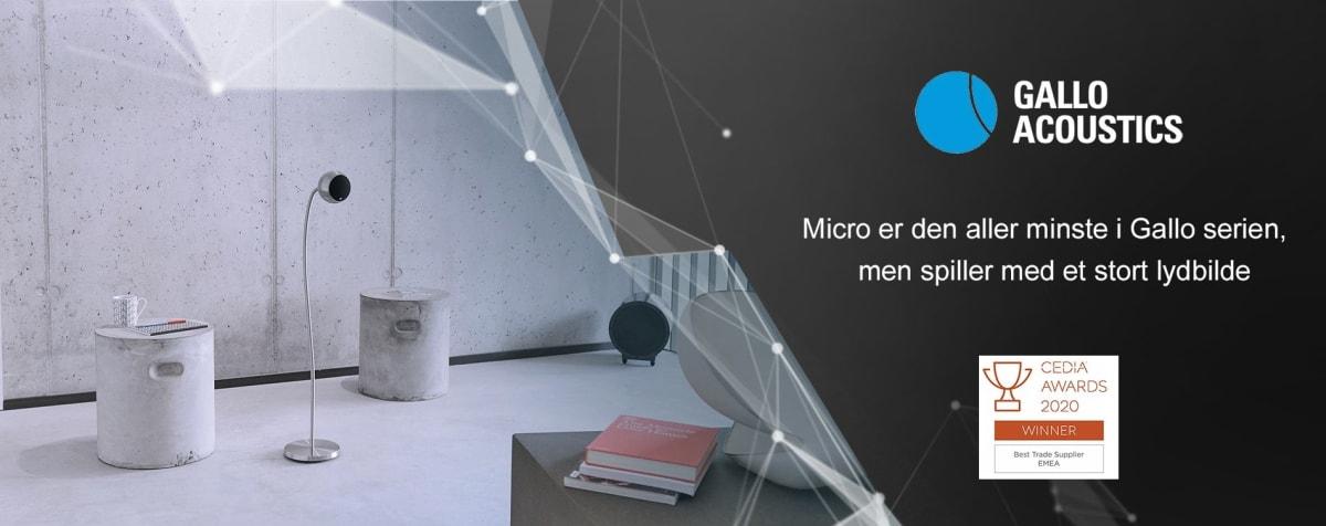 Gallo Acoustics - Micro