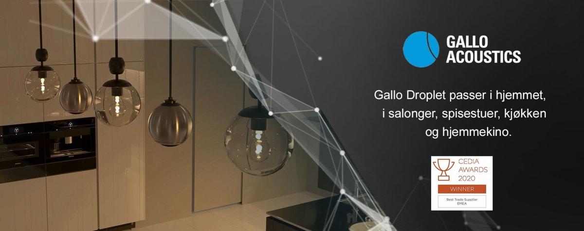 Gallo Acoustics - Droplet