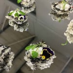 Corporate Canapés Catering Services from TopHat