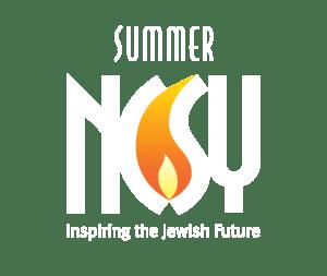 NCSY summer logo