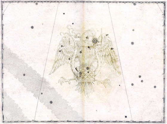 35. Which constellation is this?