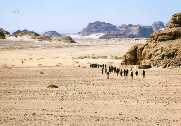 24. How many years does Israel spend wandering in the Sinai Desert?