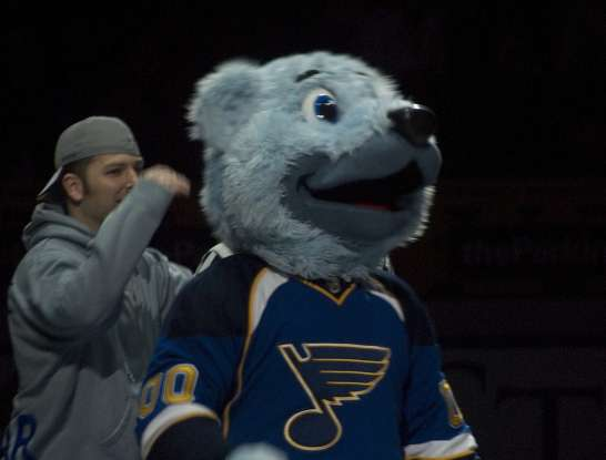 7. Louie is the mascot of the St. Louis Blues. Louie is which type of animal?