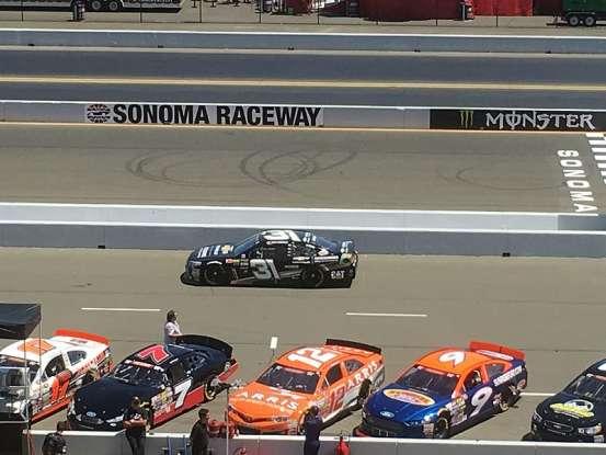 19. Who drives #31 NASCAR?