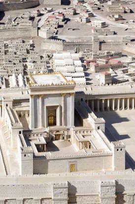 25. Jesus rode into Jerusalem on what animal?