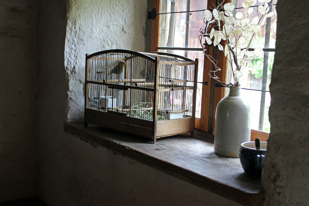 A bird sits in a rectangular cage next to a window