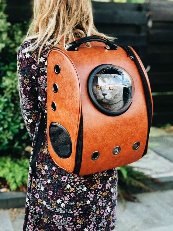 Woman wearing a cat backpack with a cat's face poking through a hole