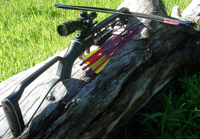 A recurve crossbow with bolts sitting on a tree trunk over green grass
