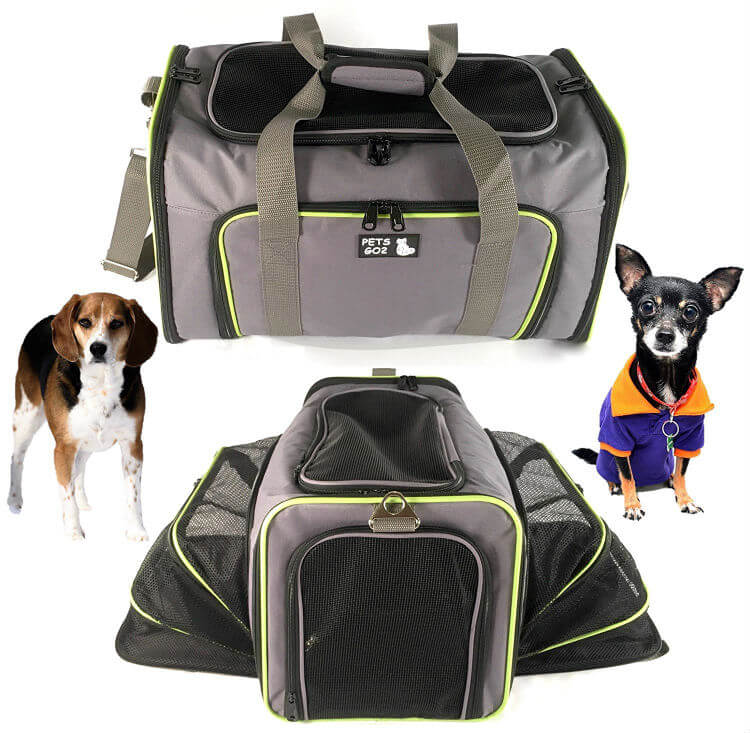 Two dogs sit outside two expanding pet carriers