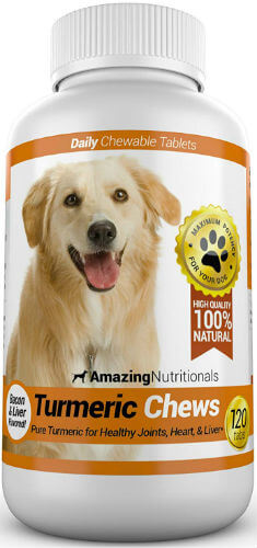 Tall bottle of turmeric dog treats with golden dog on front