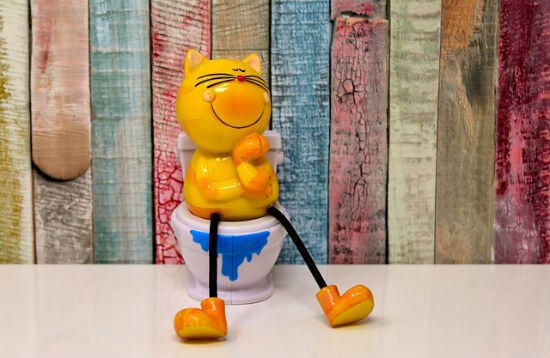 An orange ceramic cat sits happily on a toilet