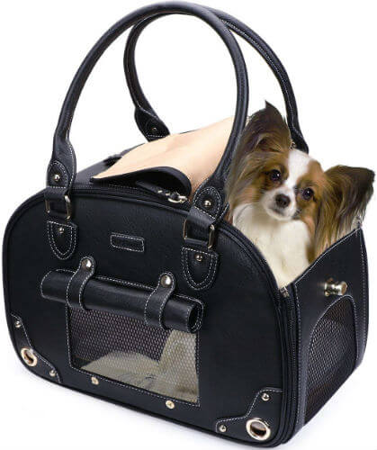 A dog pokes its head out of a black mesh dog purse