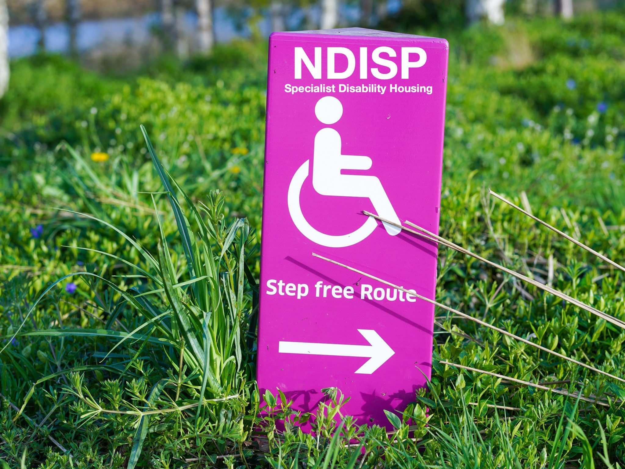 NDISP_step free image_300k