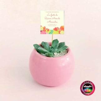 Suculentas recordatorios materas cerámica bolitas 5-7-10cm bola pequeña rosa con tarjeta Neea Flora