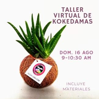 Taller virtual de Kokedamas 16 Ago Neea Flora