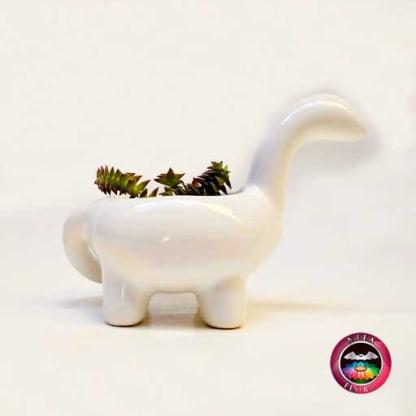 Suculenta matera cerámica animales dinosaurio