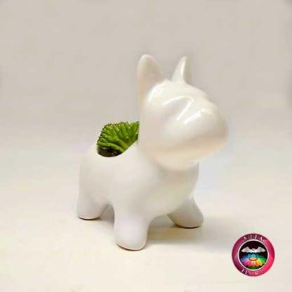 Suculenta matera cerámica animales perro 13x7x13cm