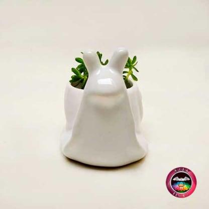 Suculenta maceta cerámica animales caracol Neea Flora frontal