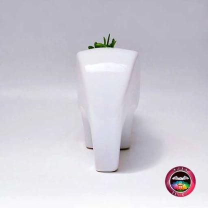 Suculenta maceta cerámica animales elefante angulado frontal Neea Flora