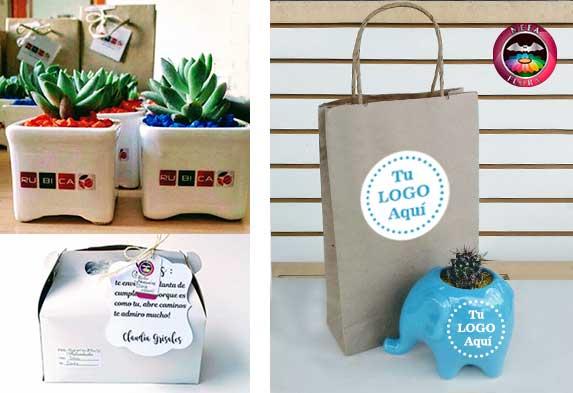 Plantas para regalos corporativos ecológicos: plantas, materas personalizadas promocionales Bogotá y otras ciudades.