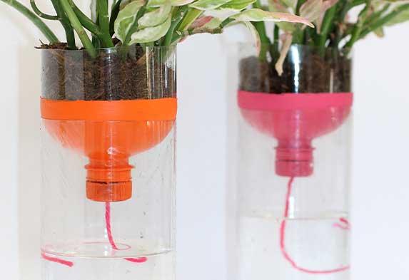 ¿Cómo regar tus plantas si te vas de vacaciones? Regar plantas con Hilo y botella. Neea Flora