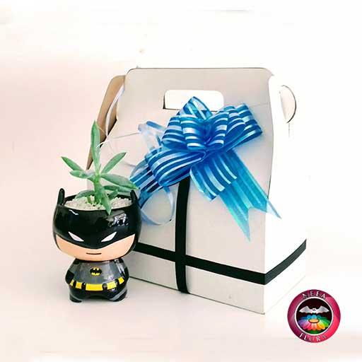 Suculenta matera cerámica superheroes Batman caja de regalo frontal Neea Flora