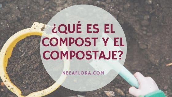 ¿Qué es el compost? y ¿qué es el compostaje? Blog Neea Flora