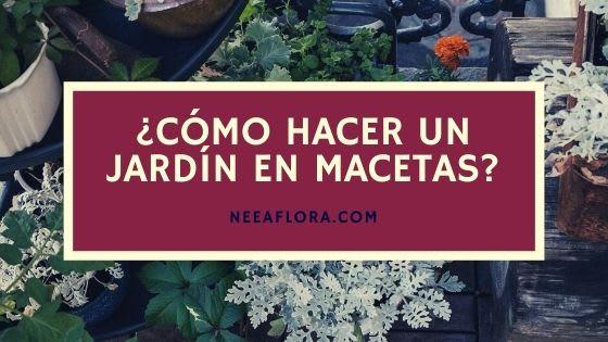 Cómo hacer un jardín en macetas - Blog Neea Flora