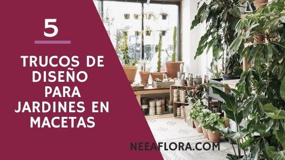 Diseño de jardines en macetas: 5 trucos geniales. Blog Neea Flora
