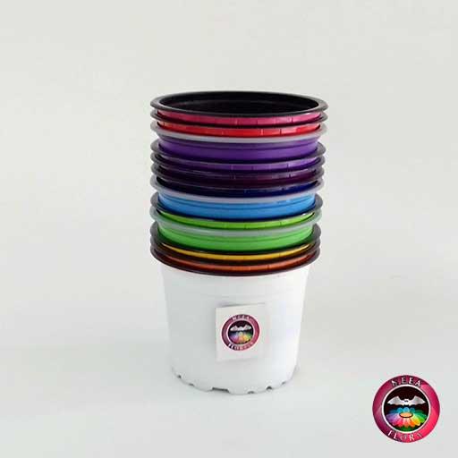 Materas plásticas 9cm colores vertical Neea Flora