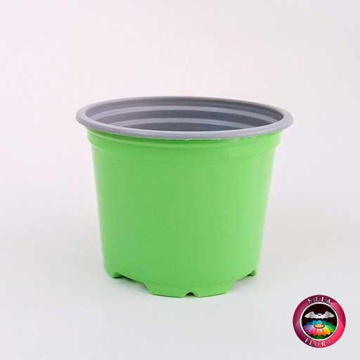Materas plásticas 9cm colores verde vivo frontal Neea Flora