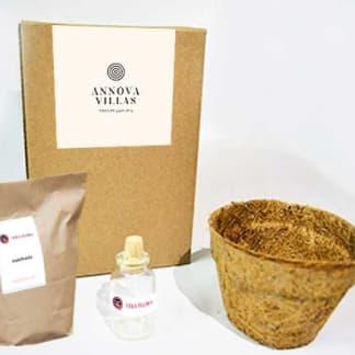 Kit de siembra matera de coco con logotipo