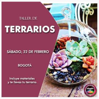 Taller de terrarios Bogotá 23 de febrero de 2020. Neea Flora