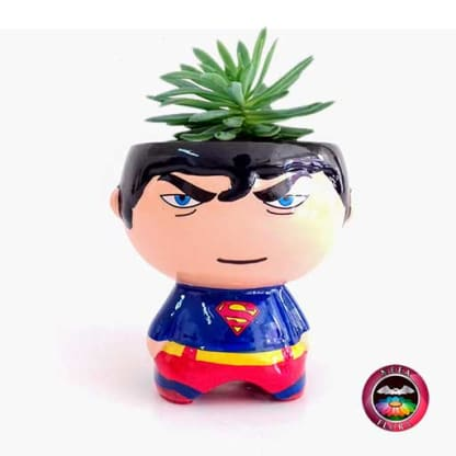 Suculenta matera cerámica super heroes Superman Neea Flora