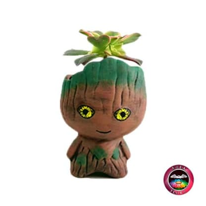 Suculenta matera cerámica super heroes Groot Neea Flora
