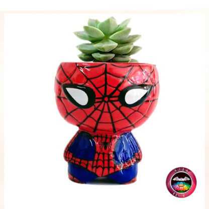 Suculenta matera cerámica super heroes Spiderman Neea Flora