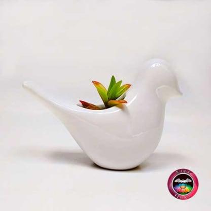 Suculenta matera cerámica animales paloma