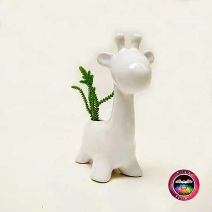 Suculenta matera cerámica animales jirafa redonda diagonal Neea Flora