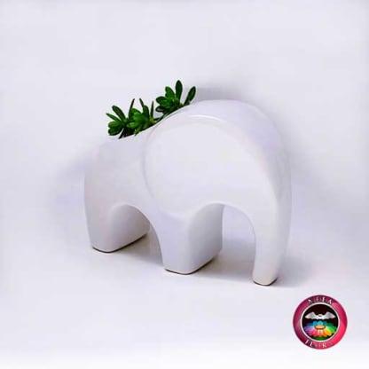 Suculenta matera cerámica animales elefante angulado diagonal Neea Flora