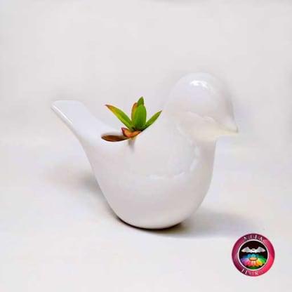 Suculenta maceta cerámica animales paloma diagonal Neea Flora