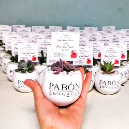 Regalos corporativos Bogota plantas suculentas ceramica esmaltada logotipo Neea Flora
