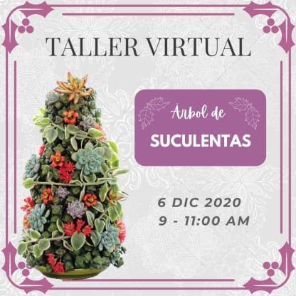 Taller árbol de suculentas en casa Dic 6 2020 Neea Flora
