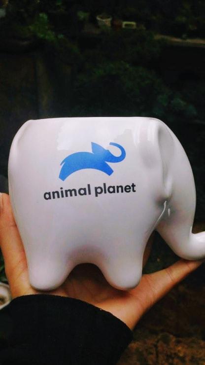 Recordatorios en cerámica esmaltada a medida. Matera elefante animal planet Neea Flora