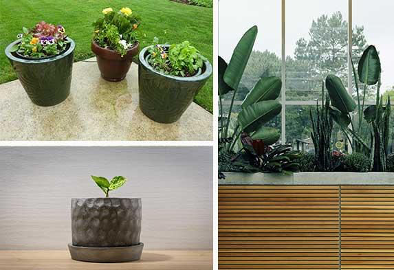 Post ideas para hacer un jardín Plantas y jardines en macetas materas Neea Flora