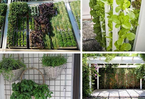 Post ideas para hacer un jardín Jardines verticales Muros Verdes Neea Flora