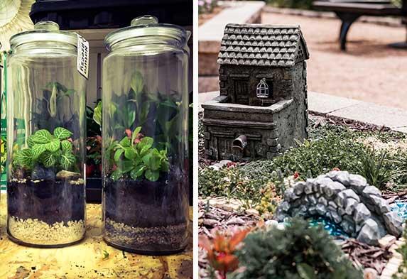 Post ideas para hacer un jardín Terrarios y Jardines en miniatura. Neea Flora