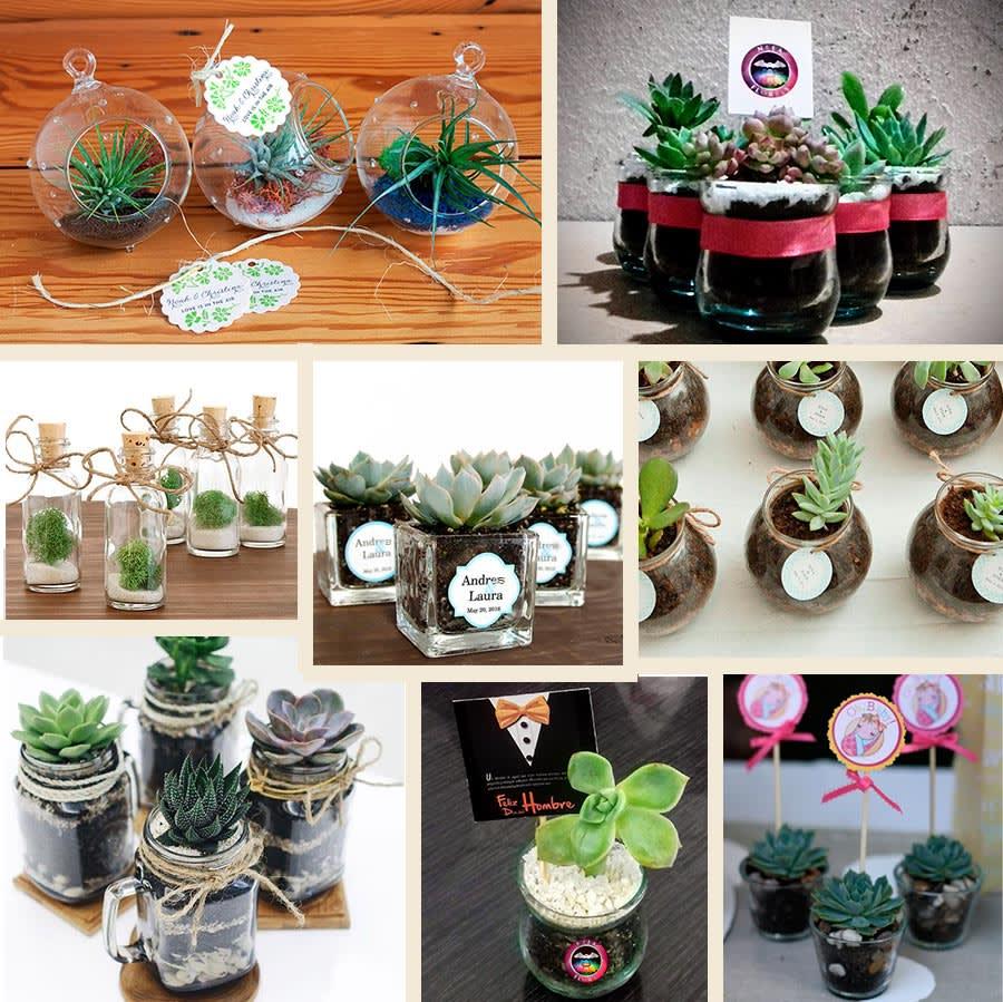 Recordatorios en vidrio con plantas y suculentas. Recordatorios Bogotá Neea Flora