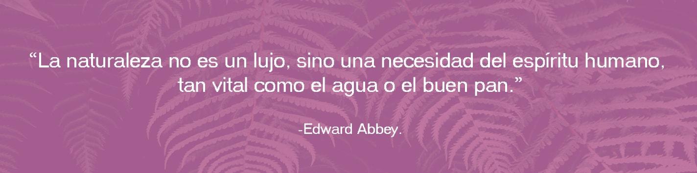 Frase Celebre: La naturaleza no es un lujo, sino una necesidad del espíritu humano, tan vital como el agua o el buen pan. Edward Abbey.