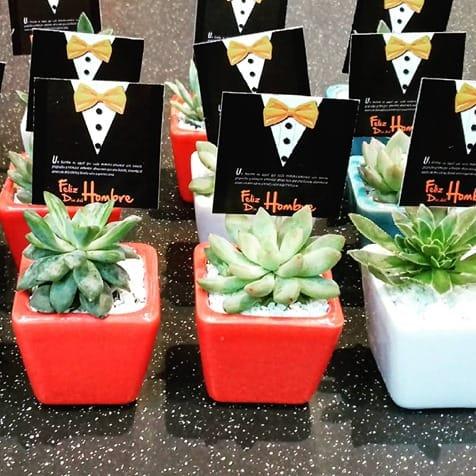 Recordatorio empresarial plantas suculentas materas cerámica esmaltada Neea Flora