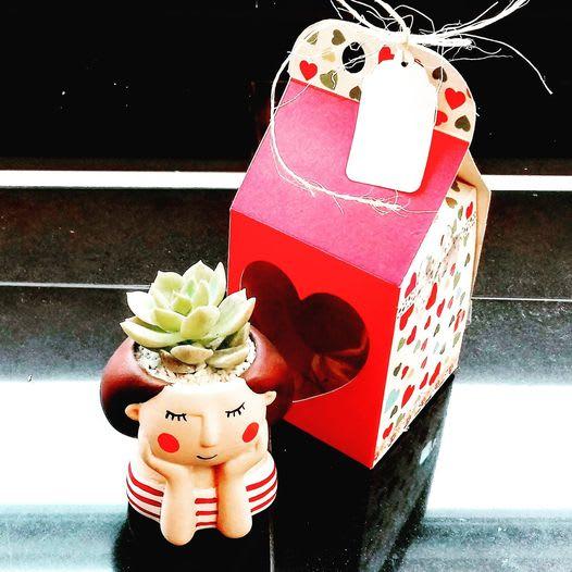 Detalles corporativo amor y amista suculenta cerámica mujer Neea Flora